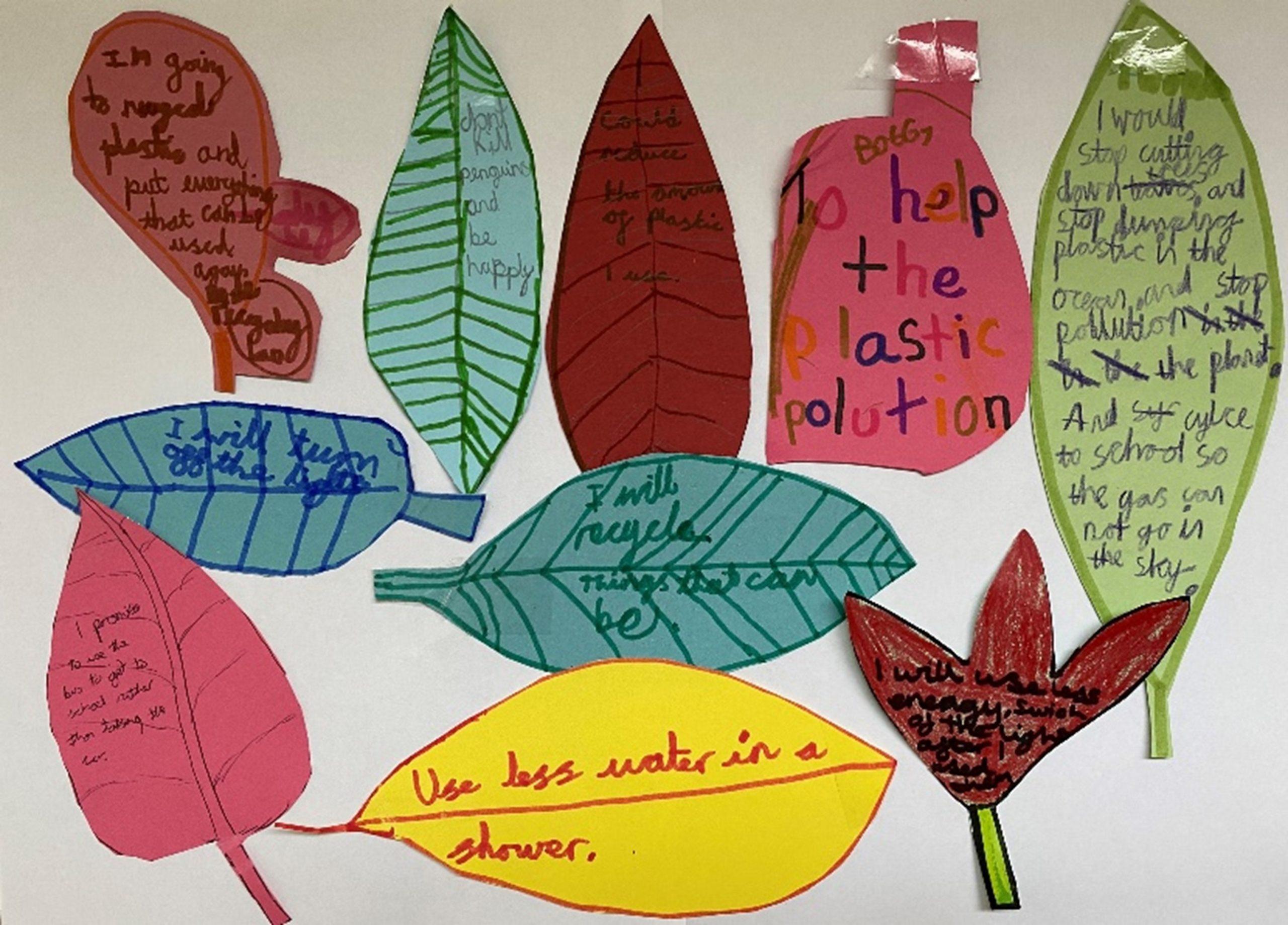 Leaf Drawings